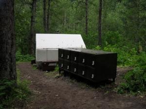 Bear Boxes