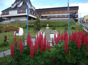 Ushuaia is full of flowers!!!!