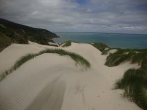 Love the sand dunes!