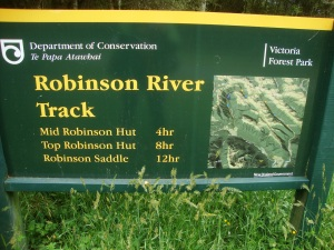 Start of the Robinson Track