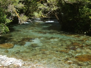 Blue Gray River