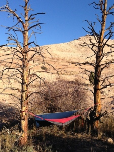 The only two trees for miles around - perfect for my hammock!  My water bottle on the ground was frozen the next morning!