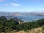 Over looking Dunedin Harbor