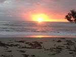 Love the sunset!