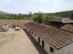 Tintale Village School
