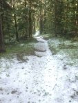 Trail covered with hail the next morning.