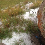 """Another hail storm, complete with thunder and lightening - I was the only thing taller than 6"""" for about 3 miles!   Yikes!"""