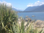 View from in front of Martin's Bay Hut at end of Hollyford