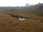 Swamps and Tarns across the tops