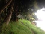Finally Fred's Camp Hut - a beautiful spot!