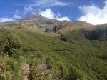 Taranaki Trail
