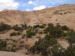 GrayJay - camping in the San Rafael Swell