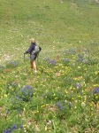 Just hiking through the flowers