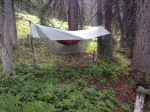 """My """"system"""" in the woods"""